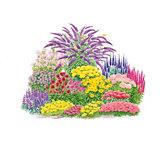 Pflanzen-Sets